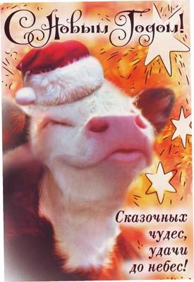 Гранд кард открытки